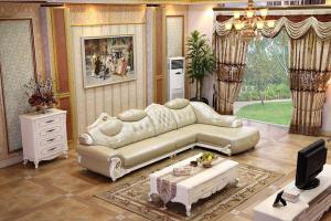 B009 Living Room Sectional Leather Sofa